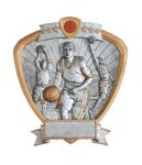 Signature Series Basketball Shield Awards Basketball Resins