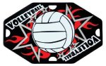 Volleyball Street Tags Dog Tags